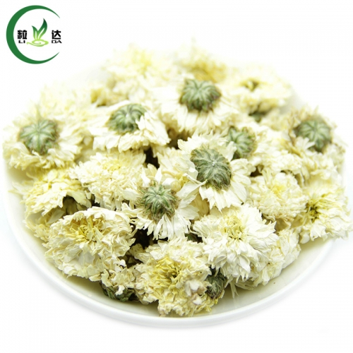 Better Quality Dried Flower Herbal Tea White Chrysanthemum Flower Tea
